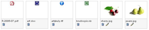 Różne formaty plików - oznaczenie ikonami